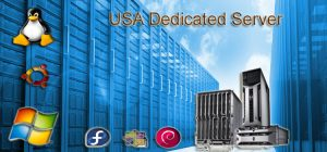 Avail the High Performance USA Dedicated Servers for Your Website